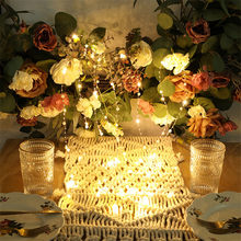 20/50/100Leds Holiday Lighting String Waterproof Outdoor Wedding Christmas USB Battery Led Decoration(China)