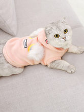 Hoopet Clothes for Cats Mascots Jacket for Dogs Costume French Bulldog Pug Sweater Suit for Cat Clothes Hoodie Coat BB5WY010(China)