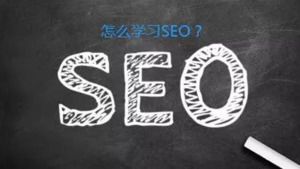 蜗牛娱乐网:小白如何成为SEO网站优化高手