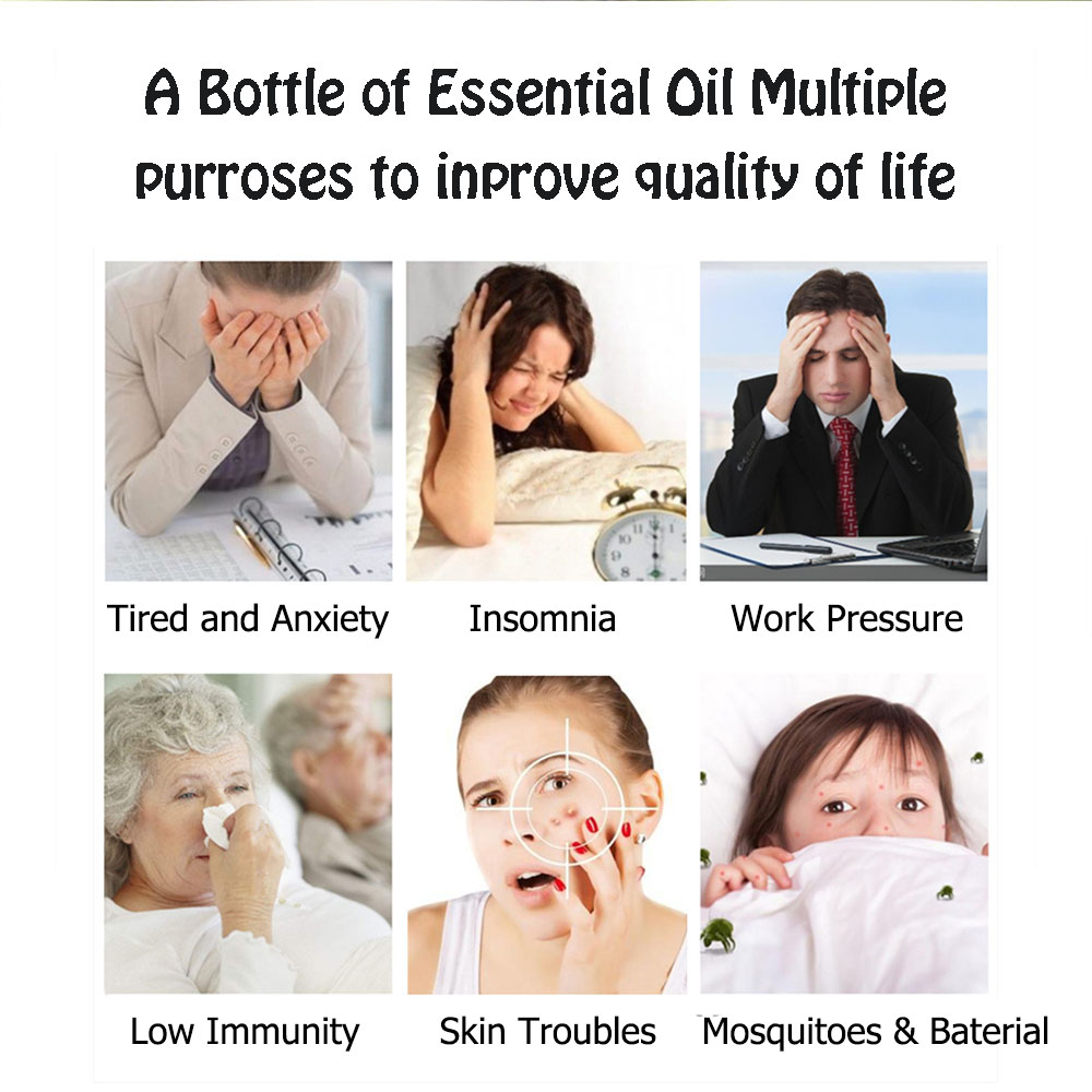 Jasmine Lavender Eucalyptus Mint Vanilla Pure Natural Essential Oils 4