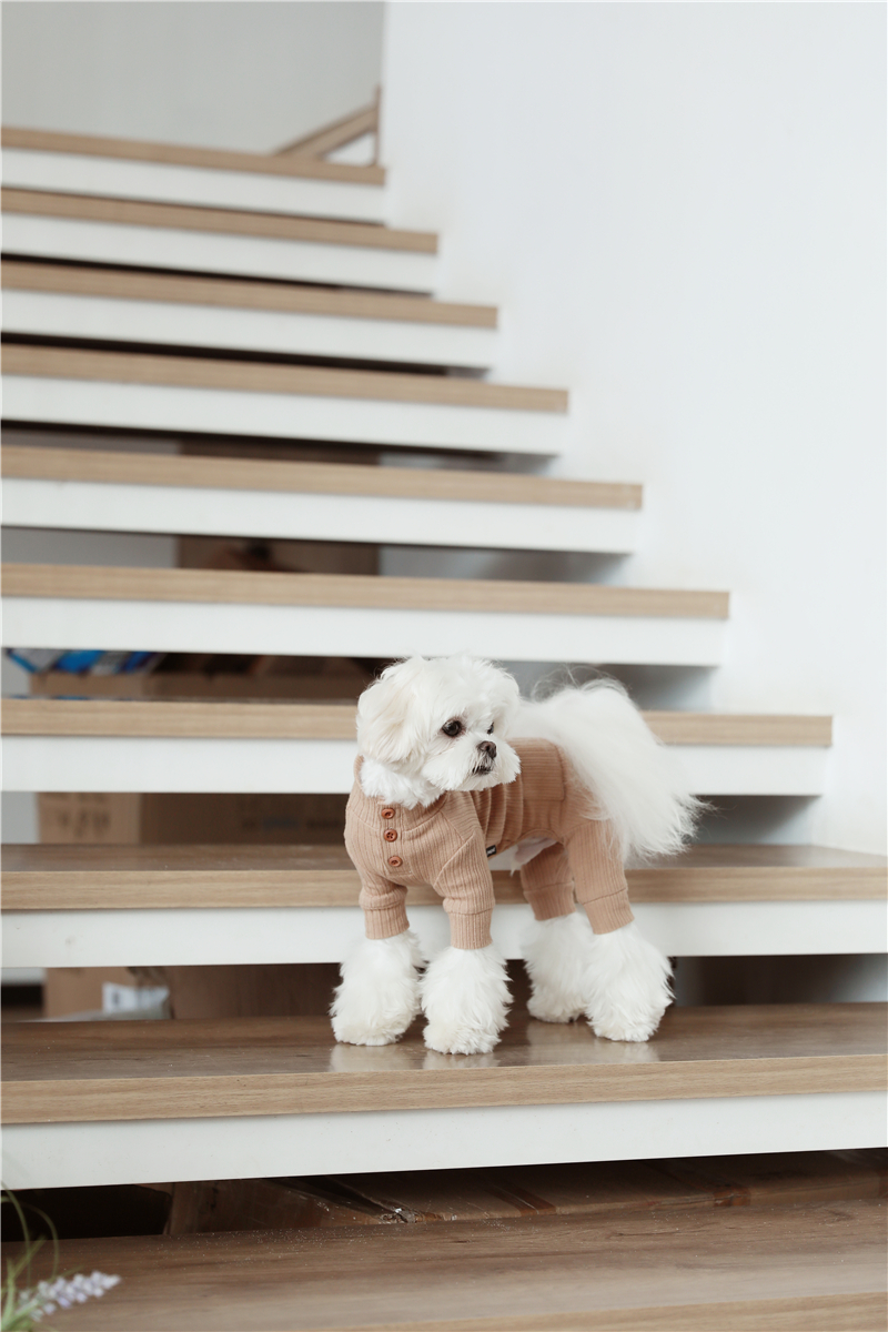 small puppy jumpsuit four legs (17)