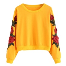 Rose Embroidery Sweatshirt Women Vintage Black Long Sleeve Autumn Pullover New Applique Casual O Neck #25