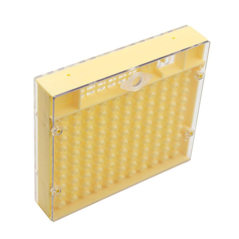 Plastic Bee Queen Box Queen Rearing Box Cultivate Queen Bee Tool Beekeeping Tool Plastic Durable Does Not Harm Queen Bee