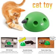 2019 New Cat Toy Pop Play Pet Ball POP N PLAY Scratching Device Funny Training Toys For Interactive Supplies