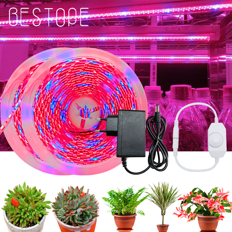 LED Full Spectrum Phyto Lamp Grow Light Strip SMD Plants Flowers LED Greenhouse Cultivo Hydroponic Controller and power supply