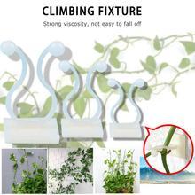 5 sztuk Hot Wall Vines oprawa Rattan zacisk klip ściany przyklejony hak wspinaczka winorośli roślin Fixer domu balkon #8230 tanie tanio dropshipping