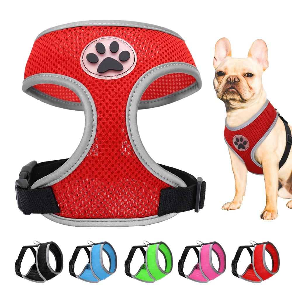 3M auto retráctil perro cachorro de plomo Rosa Azul Lila