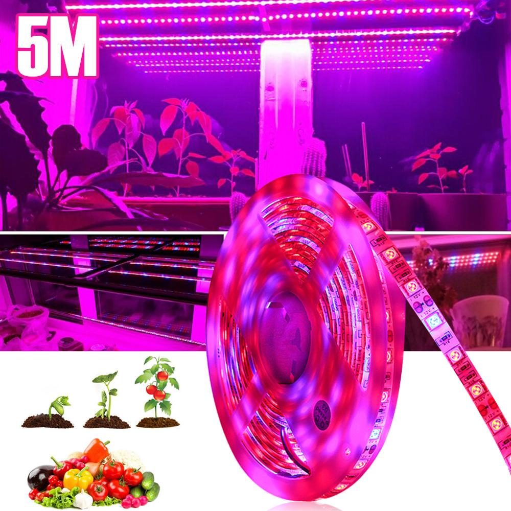5050 SMD 5M LED Grow Lamp Full Spectrum LED Strip Light IP33 IP65 DC12V 300 LEDs Growth Lamp Phytolamp For Greenhouse Plant Room