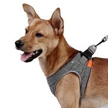 Шлейка для собак и кошек регулируемый светоотражающий жилет