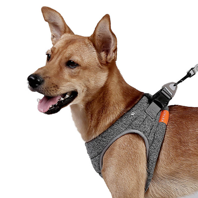 Retractable Dog Lead,Lightweight And Powerful Pull,Pet Leash Small Medium Large Breed,Extending Dogs Lead Tape Apply For All Pets,Burgundy