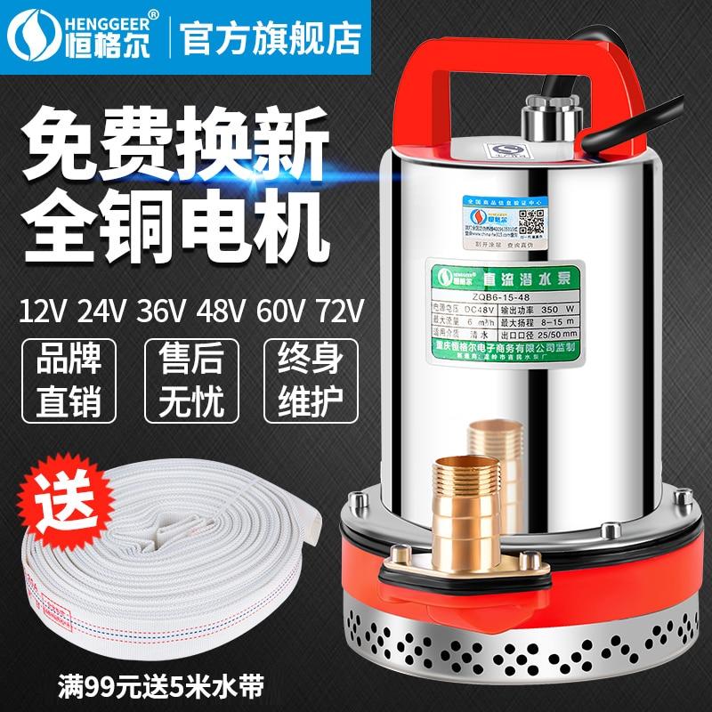 DC Submersible Pump 12V24V48V60V Volt Battery Truck Pump Small Household Agricultural Electric Vehicle Pump