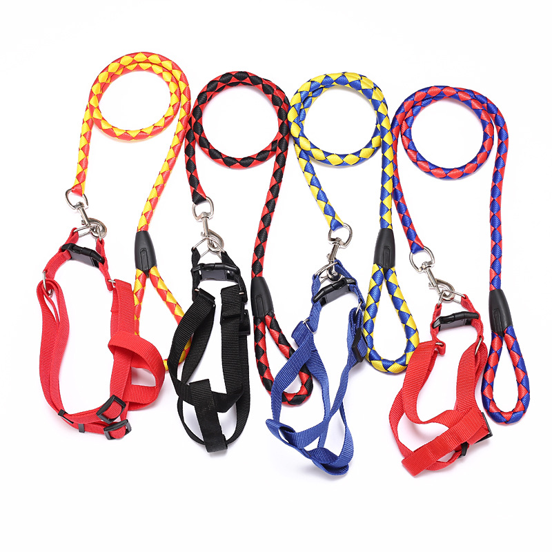 1.5 Double Color Hand-woven Large Size Round Rope Hand Holding Rope + 2.5 Xiong Bei Tao Dog Chain Neck Ring And Medium-sized Dog