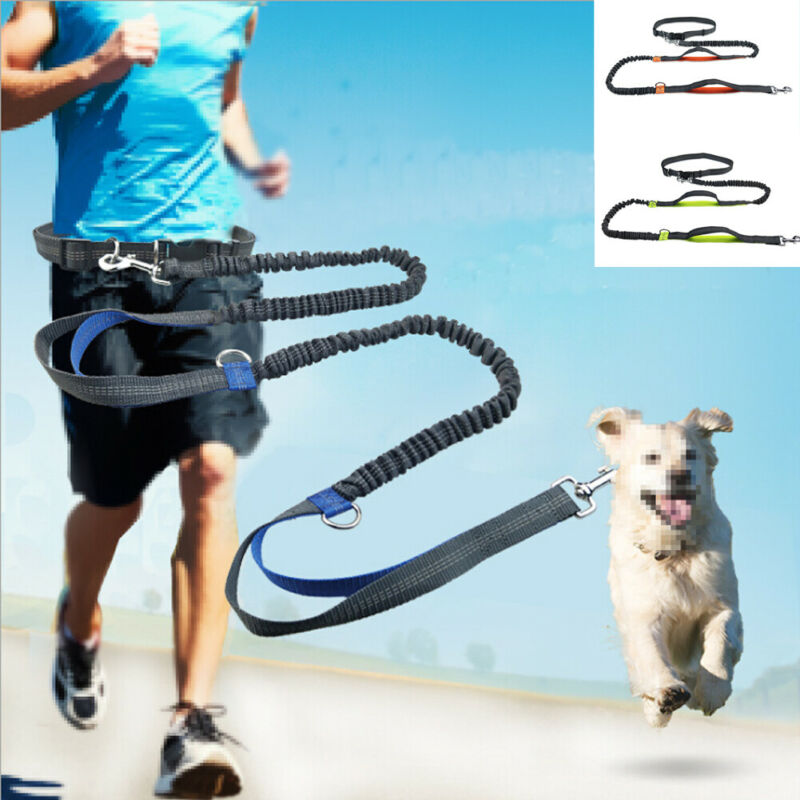 2021 New Reflective Leash Traction Rope Pet Dog Running Belt Elastic Hands Freely Jogging Pull Dog Leash Metal D-ring Leashes