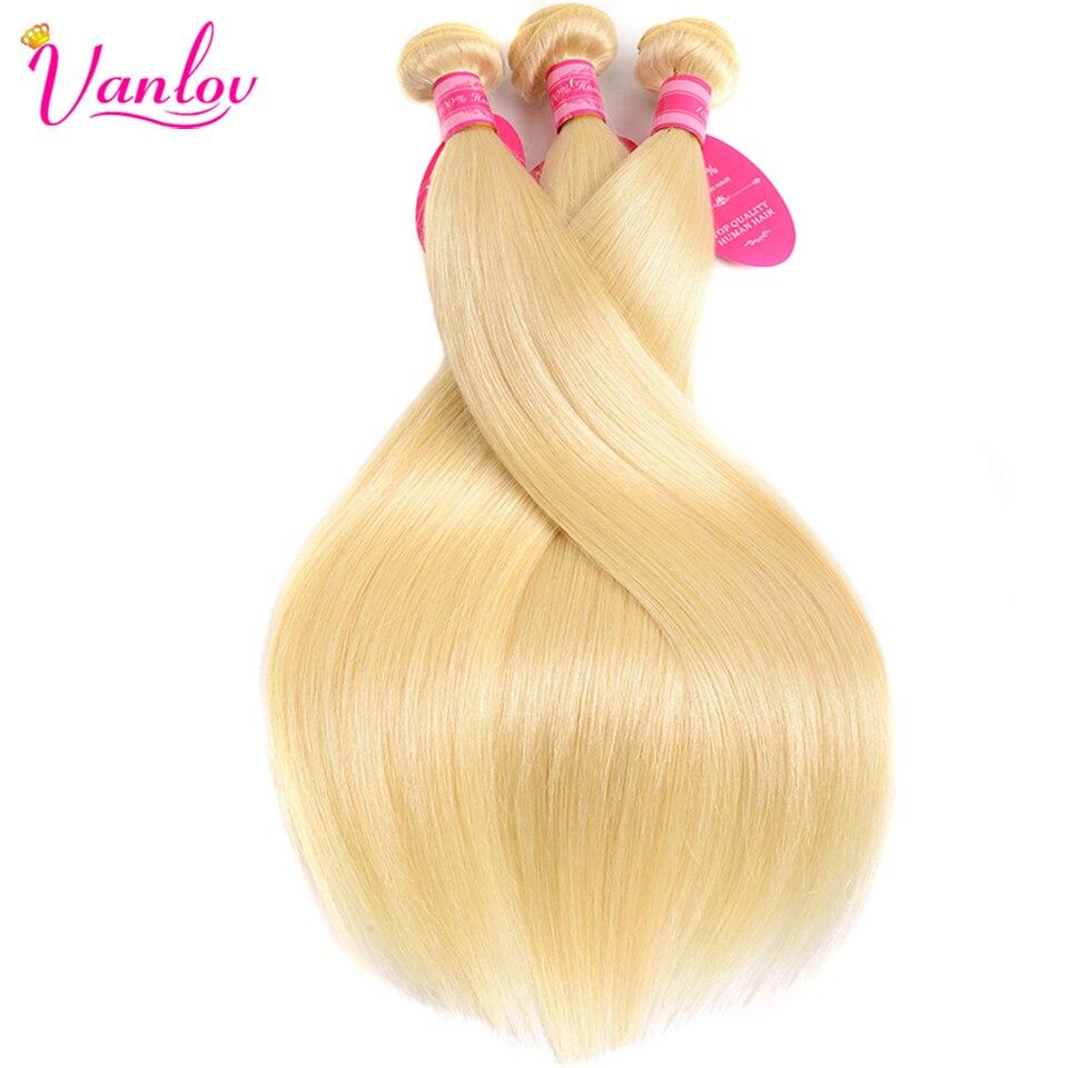 Vanlov 613 Blonde Bundles Peruvian Straight Hair 3 Bundle Deals 100% Human Hair Bundles 100gPCS Remy Hair Free Shipping (2)