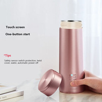 220V Electric Water Kettle Travel Water Heating Cup Mini Portable Stainless Steel Tea Pot Coffee Milk Boiling Cup Kettle