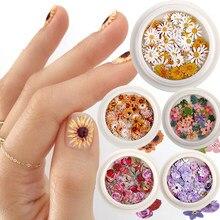 50 sztuk/pudło kolor paznokci mieszane mała stokrotka kwiat róży ultra-cienki pulp drewna łatka DIY paznokci biżuteria artystyczna zdobienie paznokci dekoracje