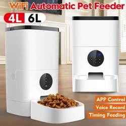 Wifi/bouton Version mangeoire automatique pour animaux de compagnie 4L/6L distributeur de nourriture pour animaux de compagnie APP contrôle enregistrement vocal écran LCD chien nourriture bols minuterie