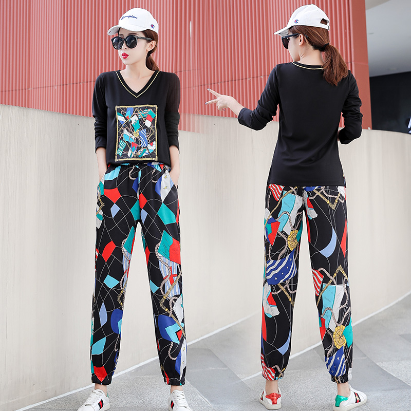 Plus Size 2019 Autumn Printed Casual Two Piece Sets Outfits Tracksuits Women V-neck Tops And Harem Pants Suits Korean Sets Suits 26