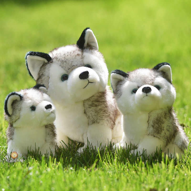 Kawaii Filhote De Cachorro De Pelúcia Brinquedos Bonito Simulação Husky Husky Dog Plush Toys Stuffed Boneca Crianças Brinquedos de Pelúcia Do Bebê Bonecas