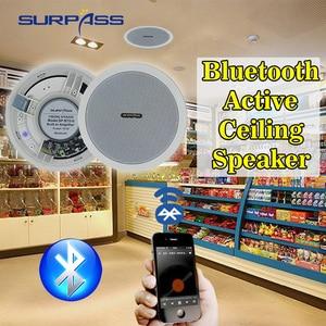 Image 2 - Altavoz de techo con Bluetooth amplificador Digital de clase D, resistente al agua, altavoz de carga activo de 10W y 5 pulgadas para reproducción de música en interiores