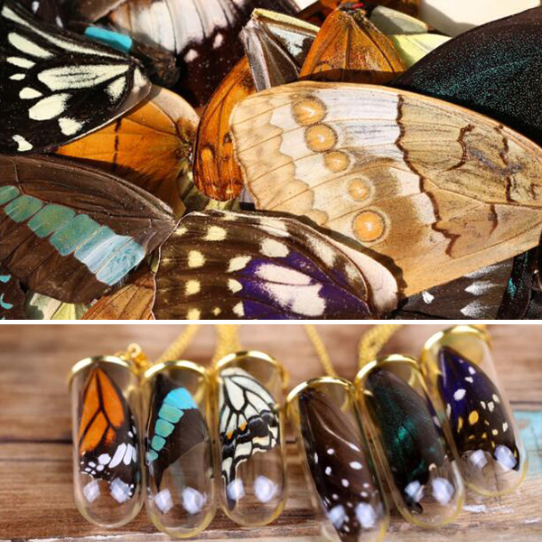 20pcs Real Butterfly Wings,3D Butterfly Specimens Wings,Real Dried Moth Butterflies Wings For Ring/earrings/necklace