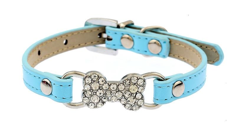 small dog collar
