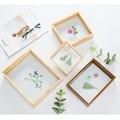 Коробка для образцов сушеных цветов и листьев в европейском стиле, квадратная рамка формата а4 для вырезания бумаги «сделай сам», двухсторо...