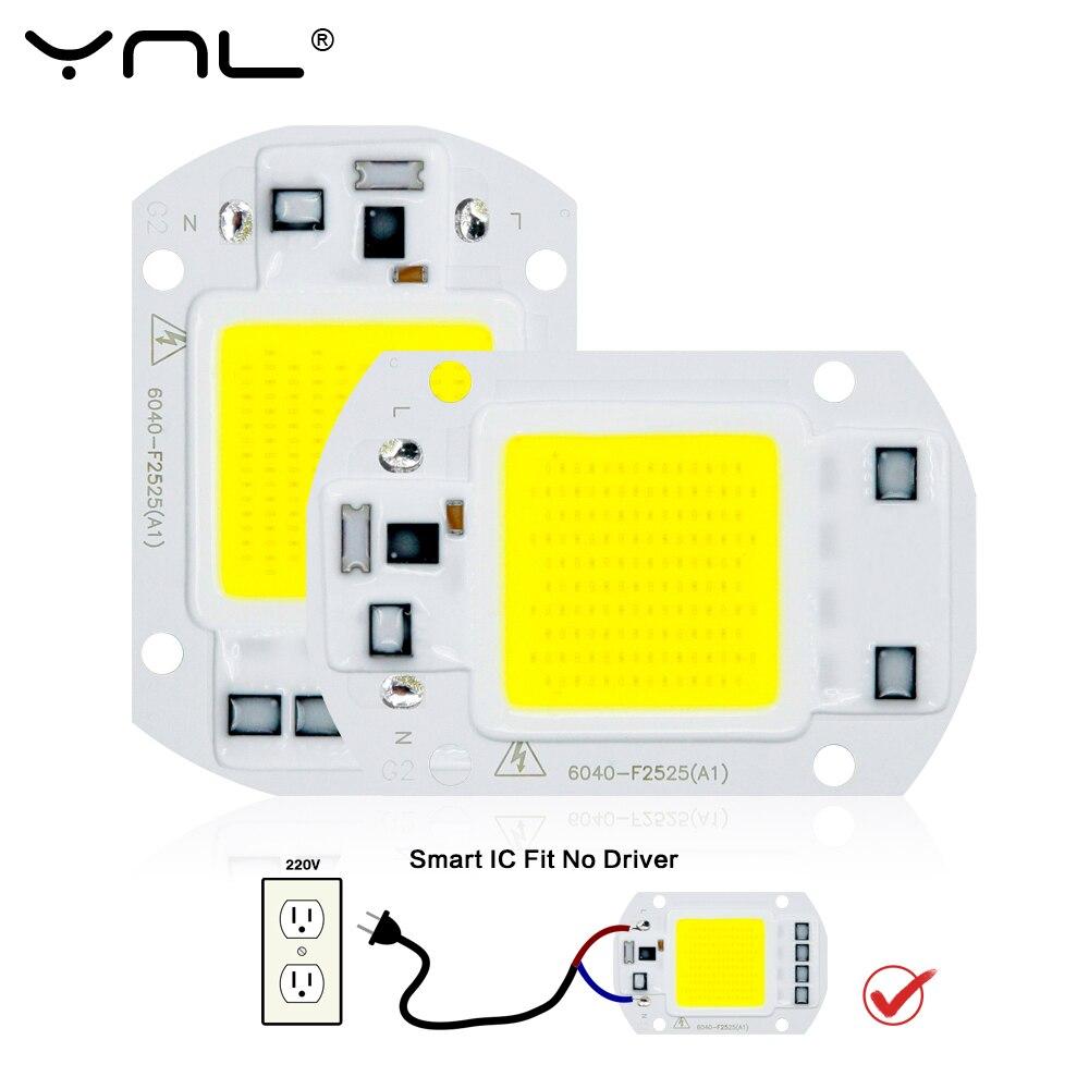 LED Lamp COB Chip Smart IC No Need Driver 110V 220V Lampada LED Light Bulb 10W 20W 30W 50W LED Spotlight Floodlight DIY Lighting