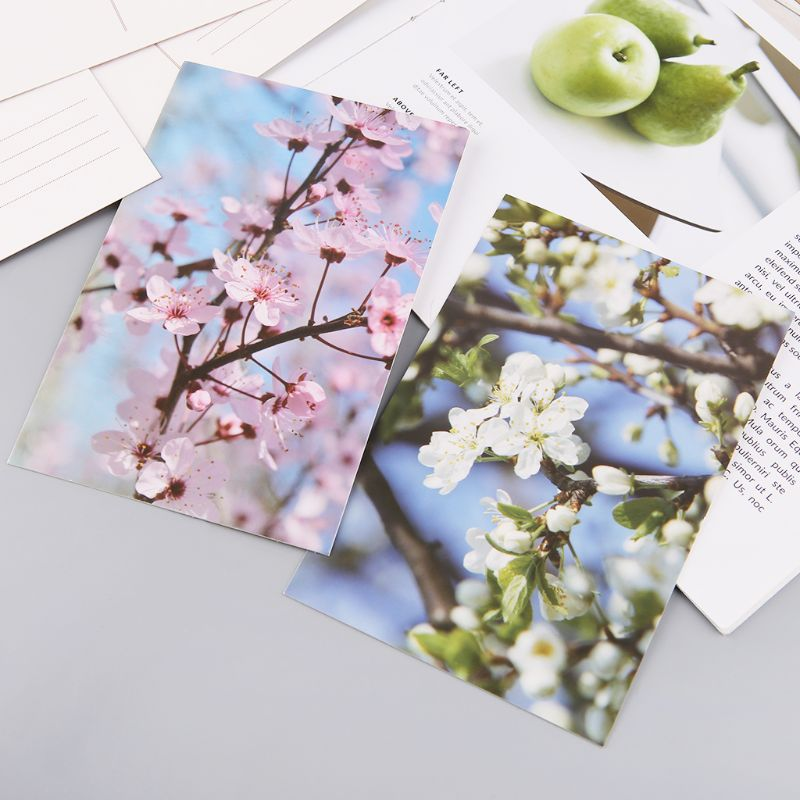 30 Sheets Peach Blossom Paintings Retro Vintage Postcard Christmas Gift Card Wish Poster Cards  4