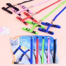 Pet Accessories Dog Cat Leash And Harness Two Piece Sets Solid adjustment Dog P Chain Leash For Kitten Cat Supplier(China)