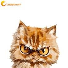 Chenistory angry cat краска для животных по номерам домашний