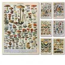 Canvas Painting Flower Mushrooms Retro Poster Wall-Art Animal Insect Palaeobios-Plant