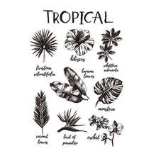 Transparent stamp Tropical Plant Clear Stamps Rubber Silicone Seal for DIY Scrapbooking Card Making Album Crafts Decor New Stamp 4 6inches animals clear stamps seal for diy scrapbooking album crafts decor cards transparent stempels silicone stamp 2019 new