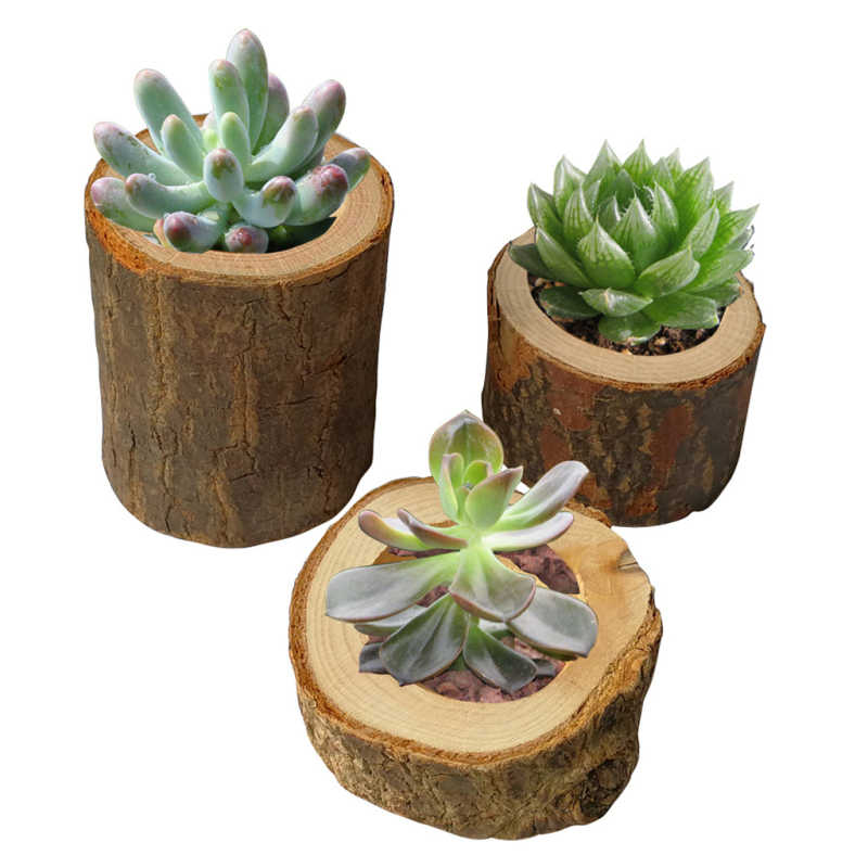 Tree Bark Plant Pot Candle Holders Handmade Wooden Candlestick Pillar Design Candelabra Ornaments Wedding Decoration for Home