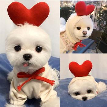 Clothes for Dogs 2020 Winter Autumn Dog Hoodie Coat Chihuahua Warm Clothes for Small Medium Large Dogs Girl Boy Disfraz De Perro image