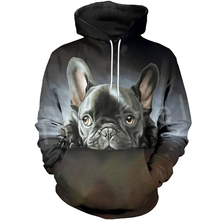 Tessffel Animal Cartoon Cute Dog Art Tracksuit Casual Harajuku 3D Print Hoodie/Sweatshirt/Jacket/shirts Men Women New Fashion s2