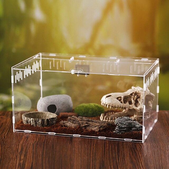 Reptile Breeding Terrarium  4