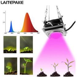 COB oświetlenie led do uprawy DIY rosną lampy pełne spektrum czerwony 4500K 180W roślin rosną chip 18000 lm oświetlenie led do uprawy roślin medycznych rosną namiot