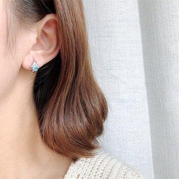 Dog Silver Blue Paw Earrings 3