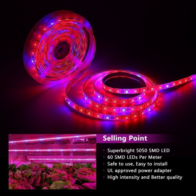 LED Plant Grow Lamp Strip USB Powered Full Spectrum SMD 5050 Red Blue 4:1 Rope Light For Greenhouse Hydroponics Plant Flower