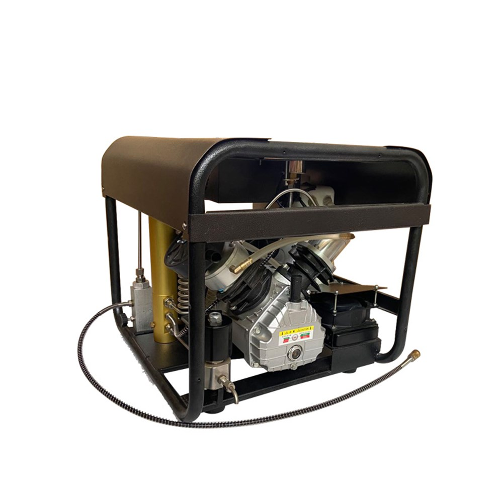 TUXING 4500PSI PCP sprężarki powietrza podwójny Cylinder wysokiego ciśnienia pompy powietrza pompy powietrza Airgun Pellets PCP karabin Inflator 110V