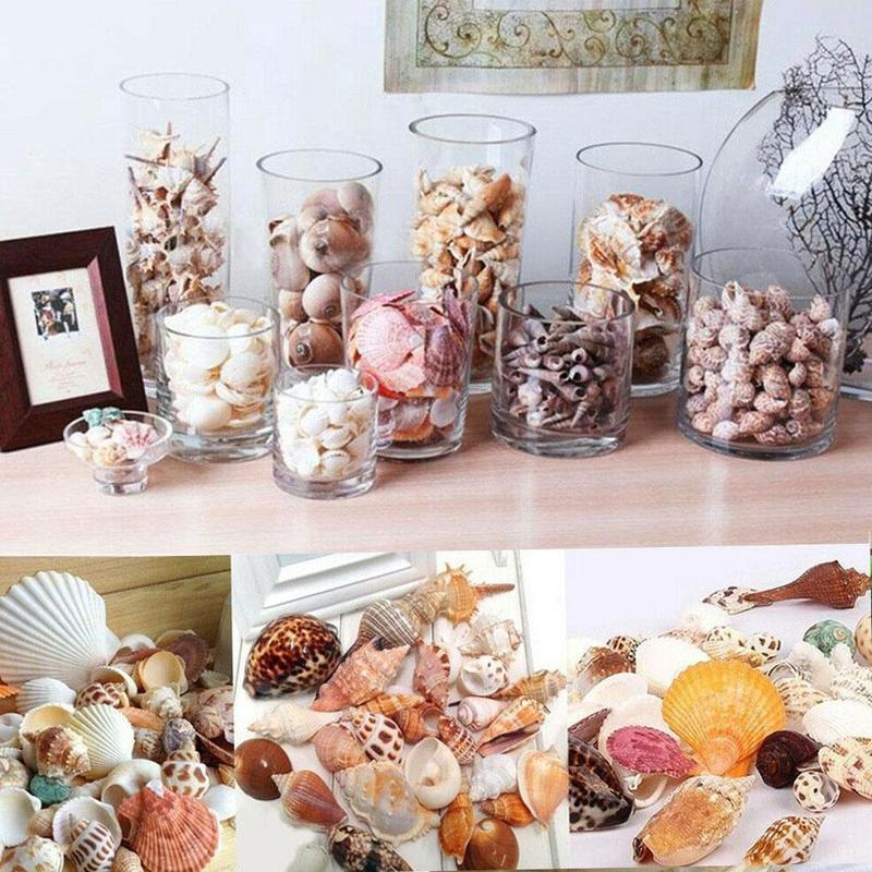 1 Bag Natural Mix Aquarium Beach Nautical DIY Shells Mixed Bulk Sea Shells  Tank Landscape Decoration Micro-landscape Ornaments