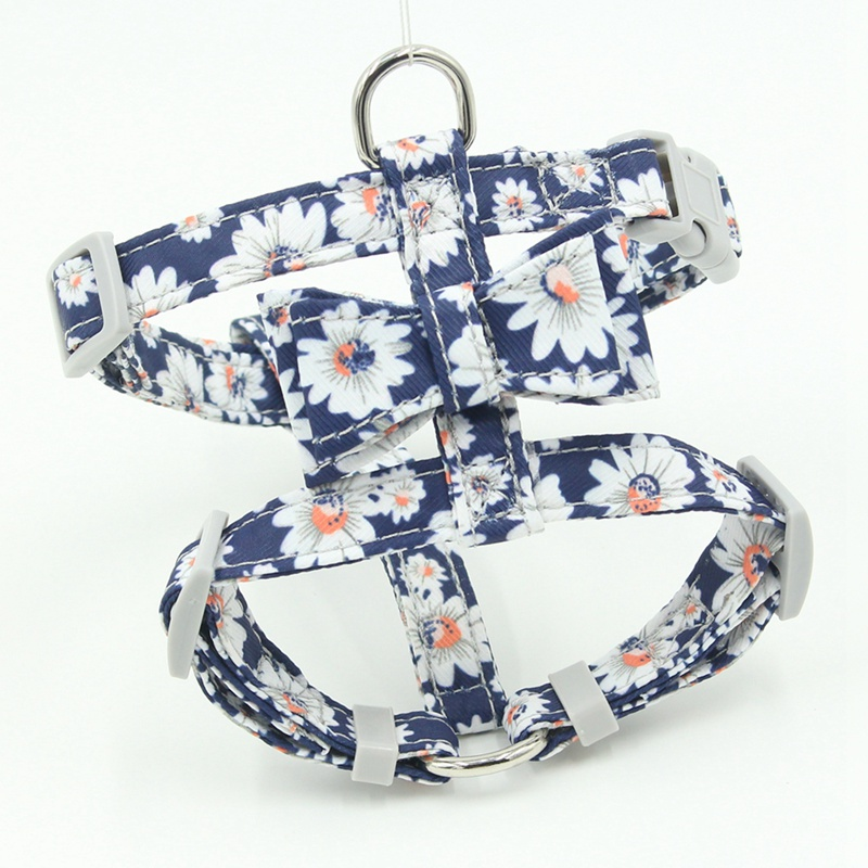cute dog harness and leash