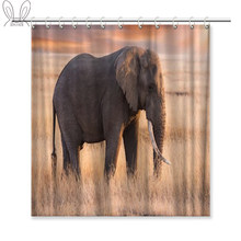 Aplysia Elephant in the Savanna Field of Serengeti National Park Tanzania Shower Curtain 72 x 72 Inches Waterproof with Hooks(China)