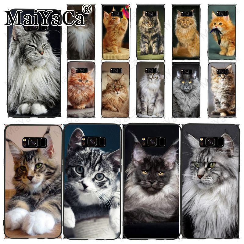 pet maine coon cat Pattern TPU Soft Phone Accessories Cell Case For samsung galaxy s10plus s9 s8plus note8 note9 note10 case