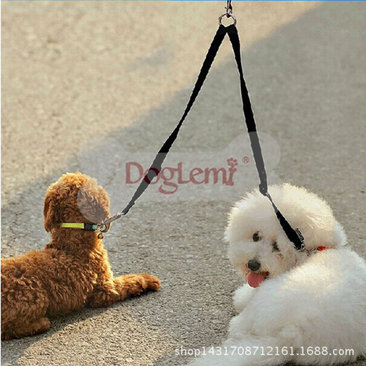 Hot Sales Pet Supplies Reinforced Pure Nylon Double-ended Traction Rope And Hold Two Dog