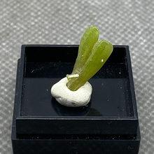 Natural pyromorphite mineral espaço pedras e cristais coleção pedras preciosas quartzo do tamanho da caixa da china 25 #