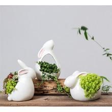 Cartoon Rabbits Flowerpot Succulents…