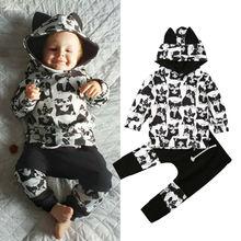 Pants Tracksuit-Set Sweatshirt Leggings Hooded Baby-Girl Infant Boy Winter 0-24-Months