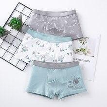 Children's Underwear Baby Cotton Briefs Cartoon Print Underpants 6 8 10 12 14 Years Striped Toddler Panties Boys Briefs 3pcslot